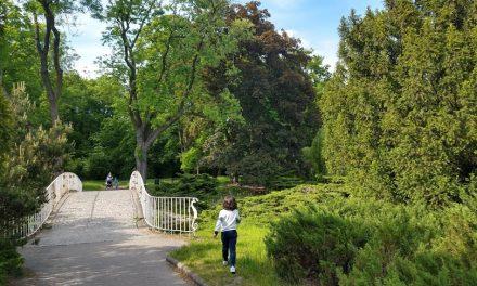 #32 Impressões de uma macuxi em terras polacas