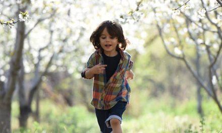 Sobre proteger nossas crianças dos lobos em pele de cordeiro